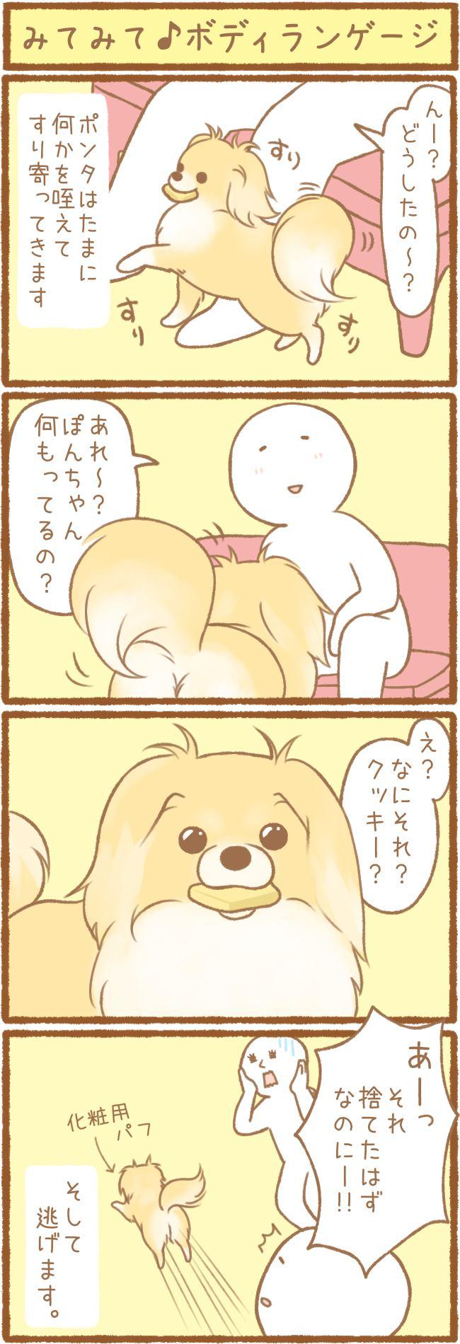 ただの犬好きです。第36話 みてみて♪ボディランゲージ