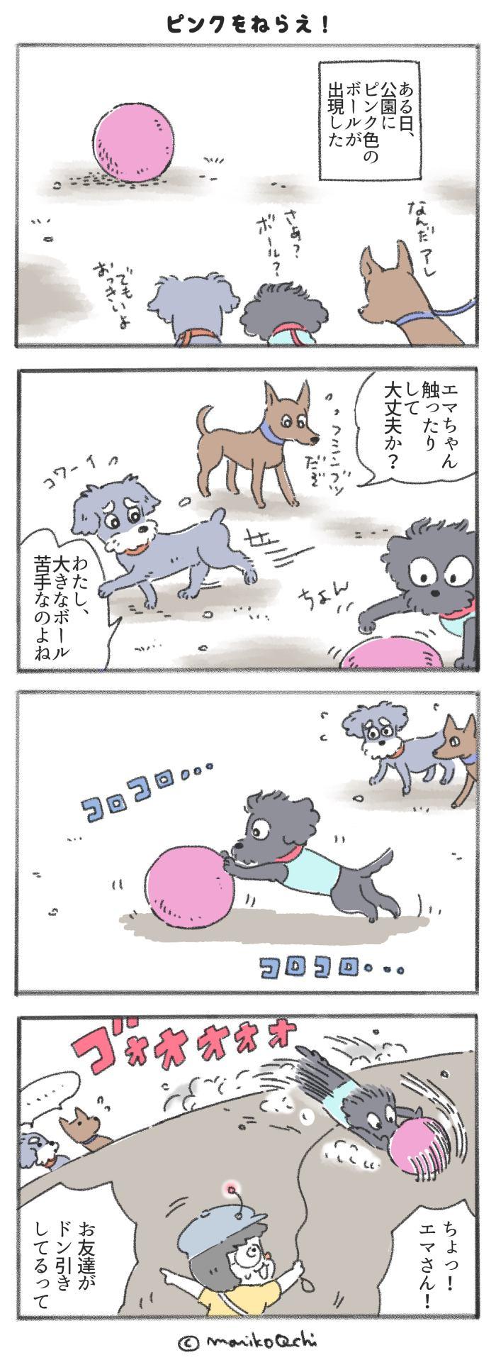 犬と暮らせば【第213話】
