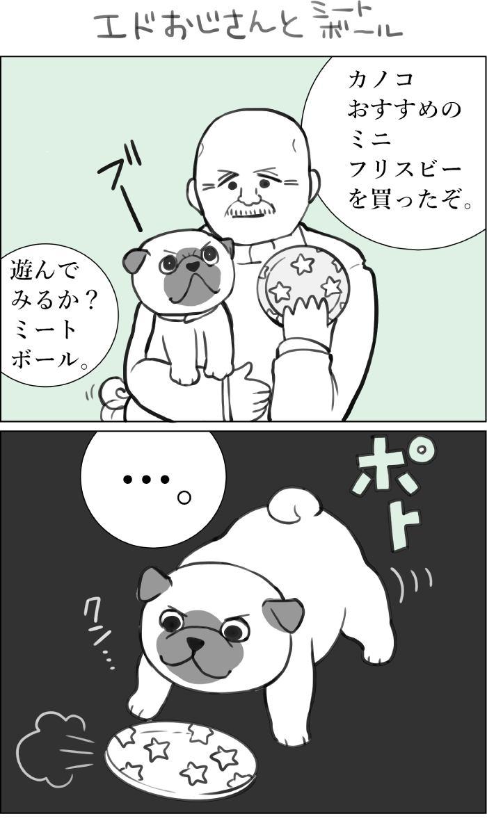 くりかのこ アメリカ犬暮らし第16話1枚目