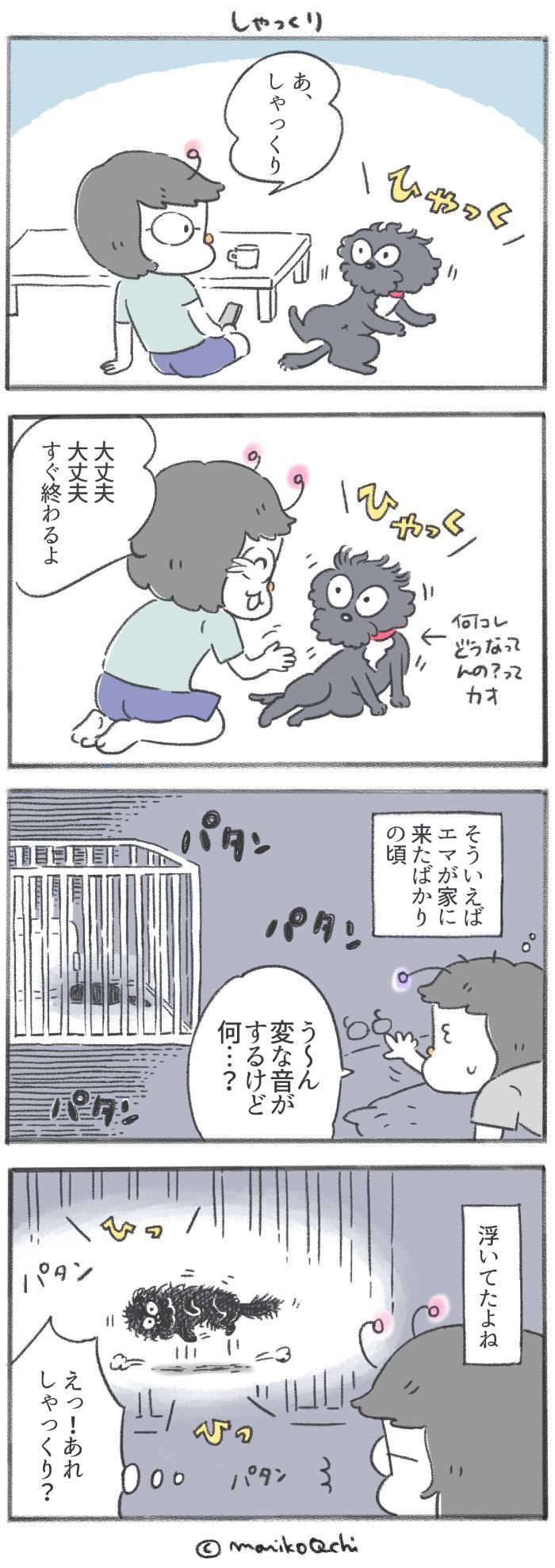 犬と暮らせば【第198話】