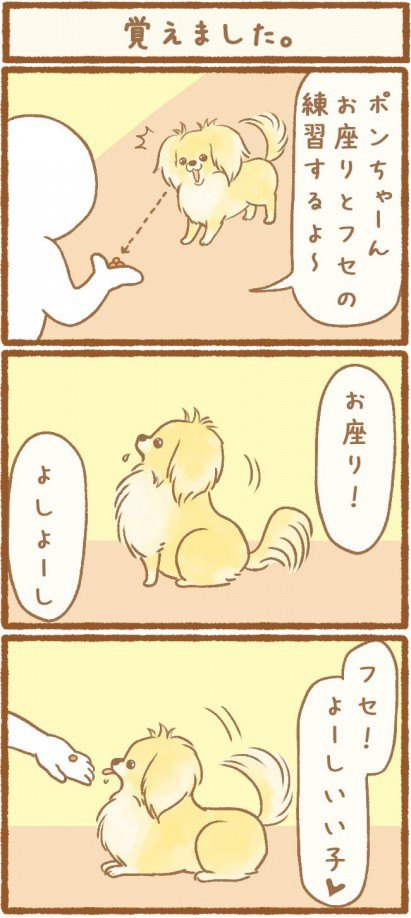 ただの犬好きです。第7話1