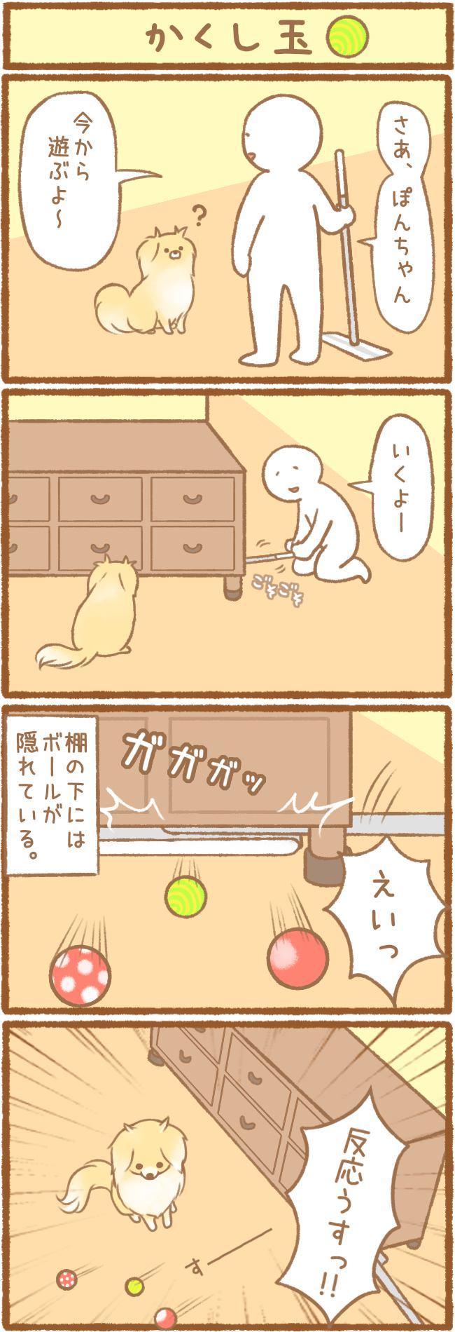 ただの犬好きです。第58話 かくし玉○