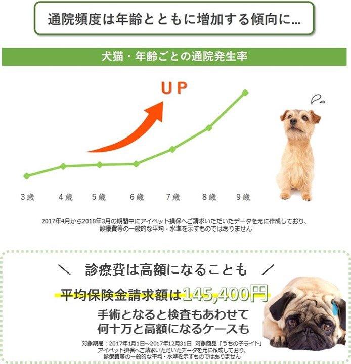 年齢診療費_犬