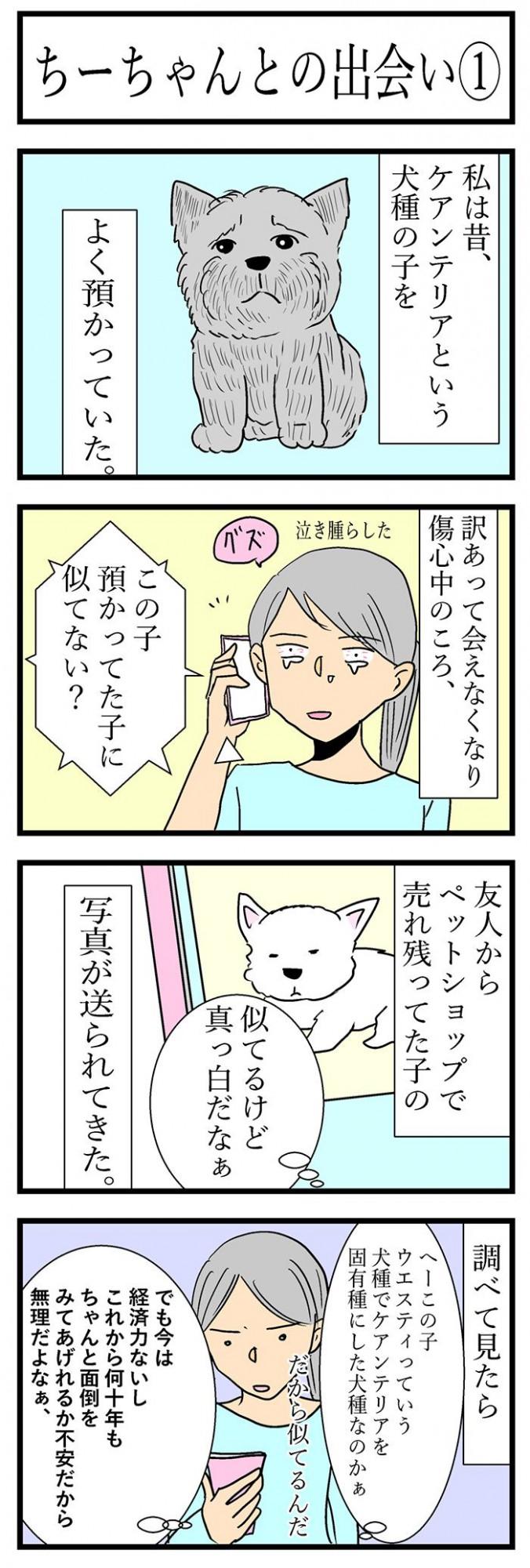 ちーちゃんですけどもっ【第100話】1