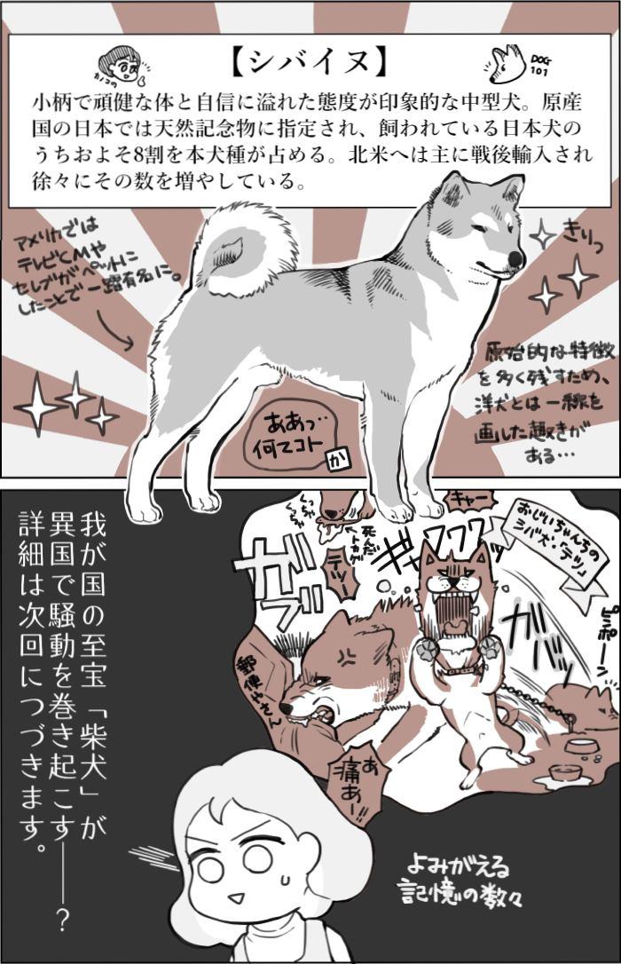 くりかのこ アメリカ犬暮らし第27話2枚目
