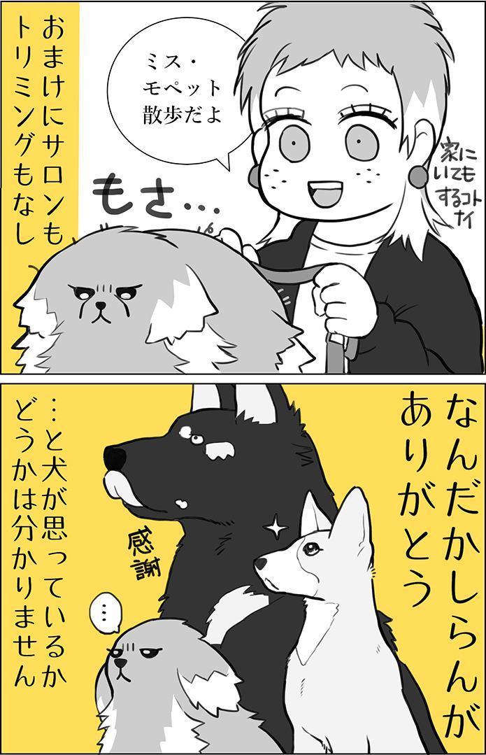くりかのこ アメリカ犬暮らし第9話2枚目