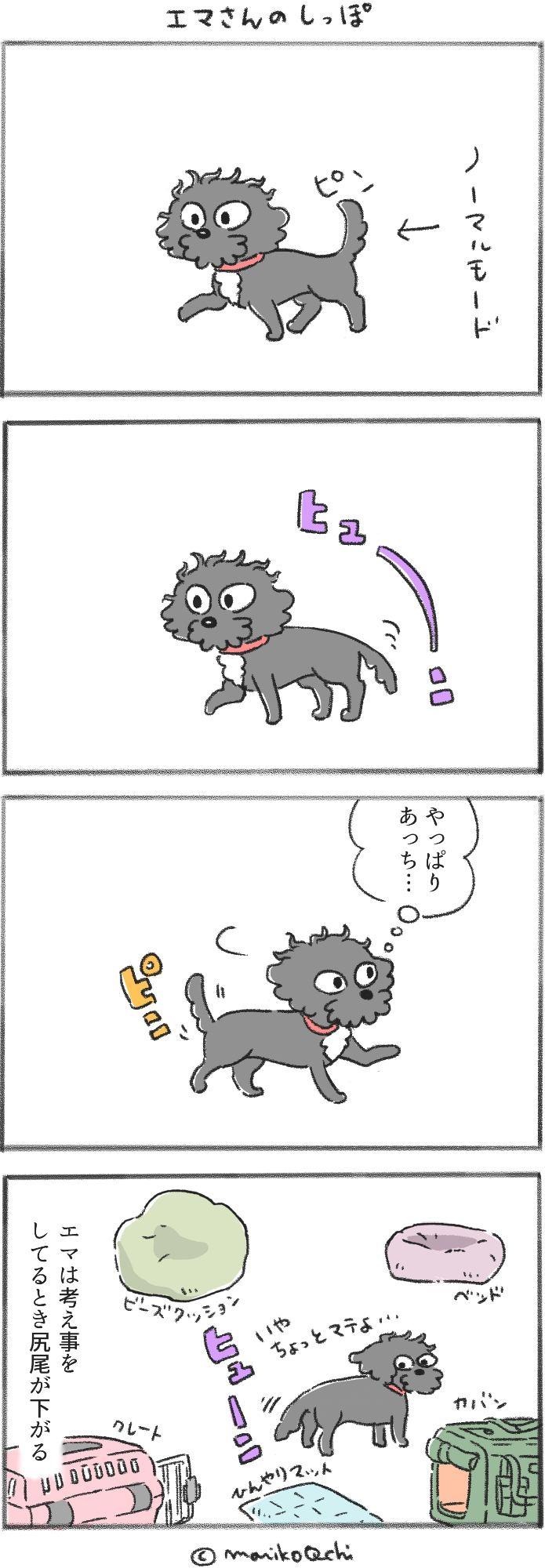 犬と暮らせば第21話