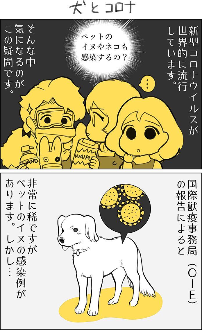 くりかのこ アメリカ犬暮らし第8話1枚目