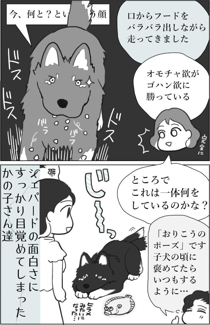 くりかのこ アメリカ犬暮らし第24話2枚目
