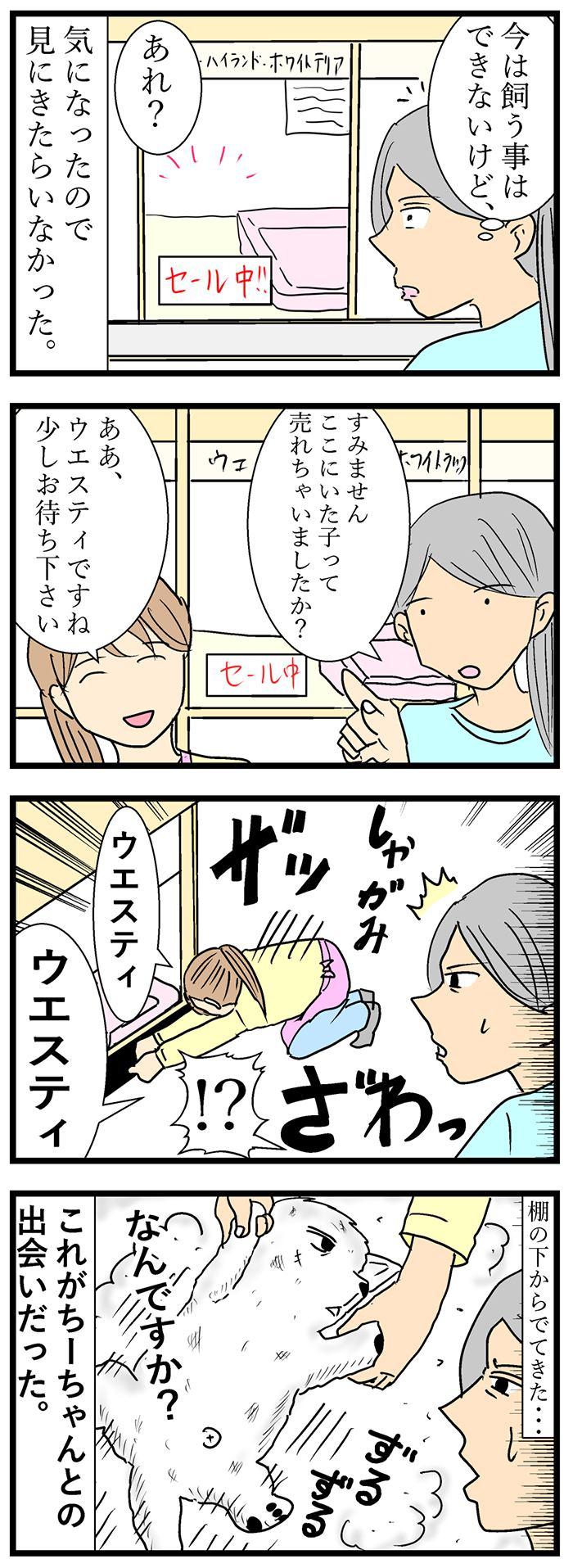 ちーちゃんですけどもっ【第100話】2