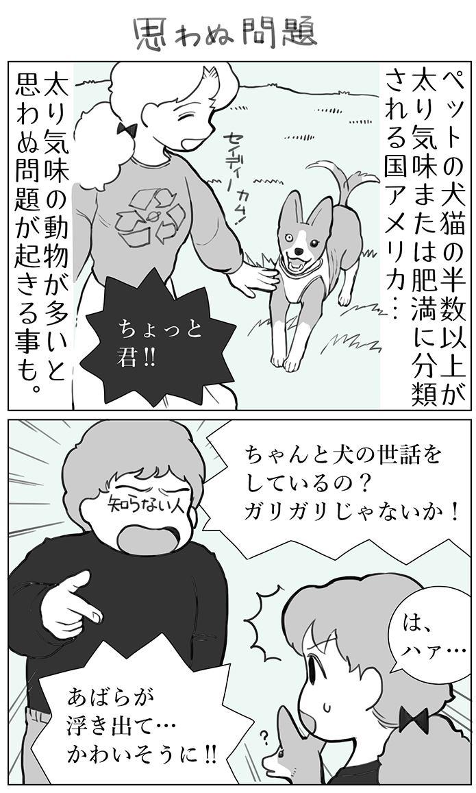 くりかのこ アメリカ犬暮らし第11話1枚目