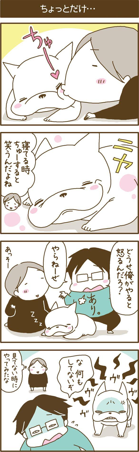 フレブルこくぼ第25話