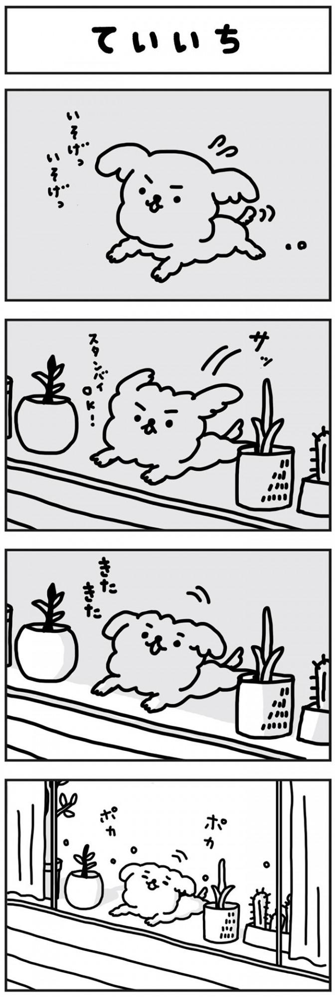 がんばれ もこたろう【第95話】