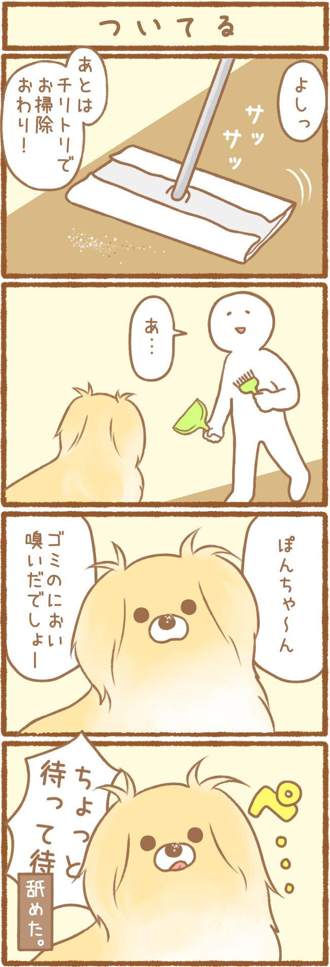 ただの犬好きです。第38話 ついてる