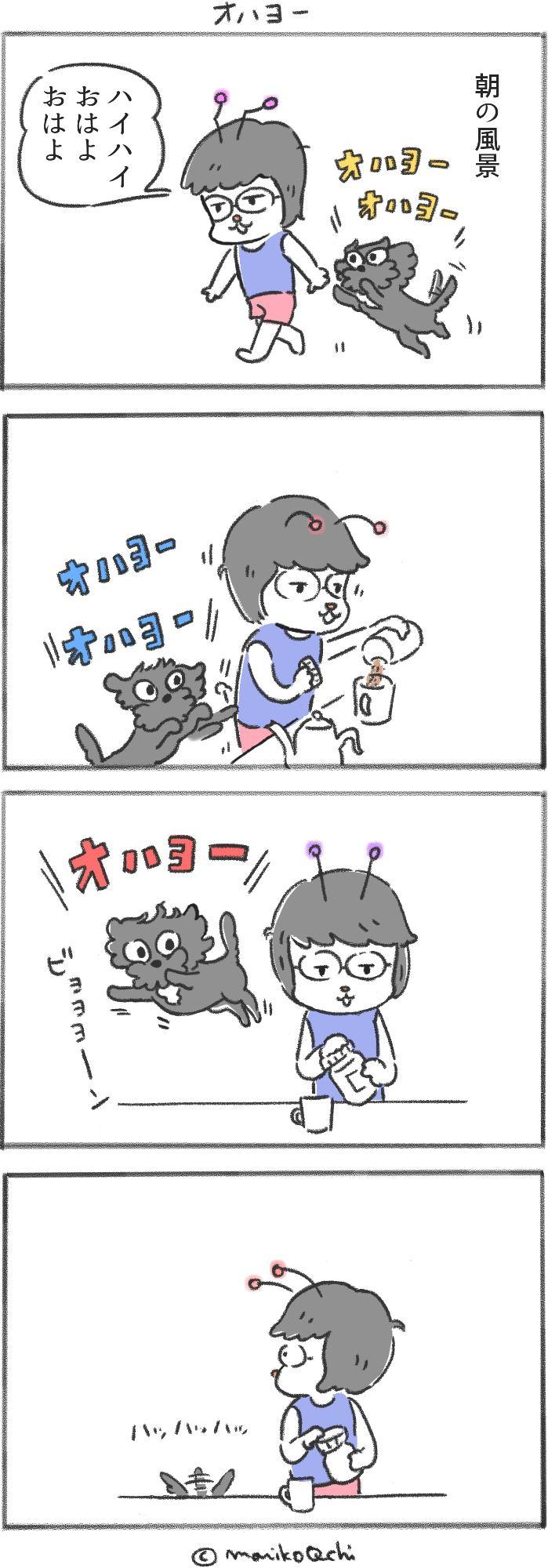 犬と暮らせば第11話