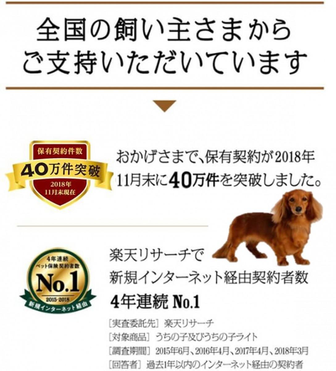 ご支持_犬