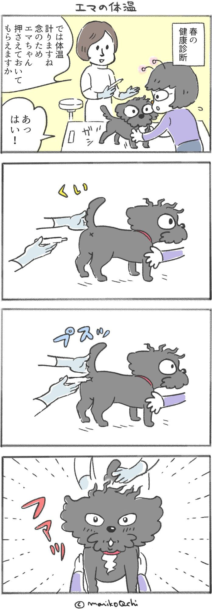 犬と暮らせば第36話