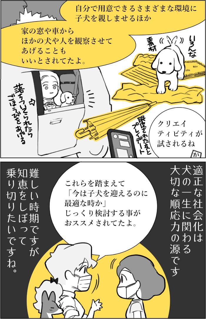 くりかのこ アメリカ犬暮らし第25話2枚目