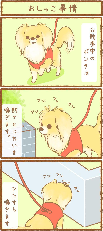 ただの犬好きです。第21話 おしっこ事情1