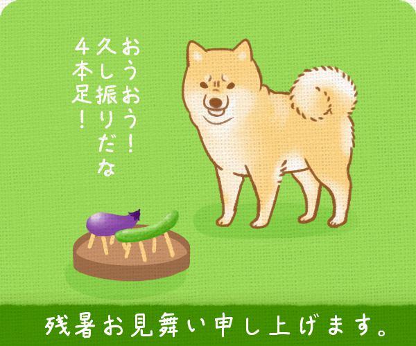 ただの犬好きです。第65話 残暑お見舞いイラスト