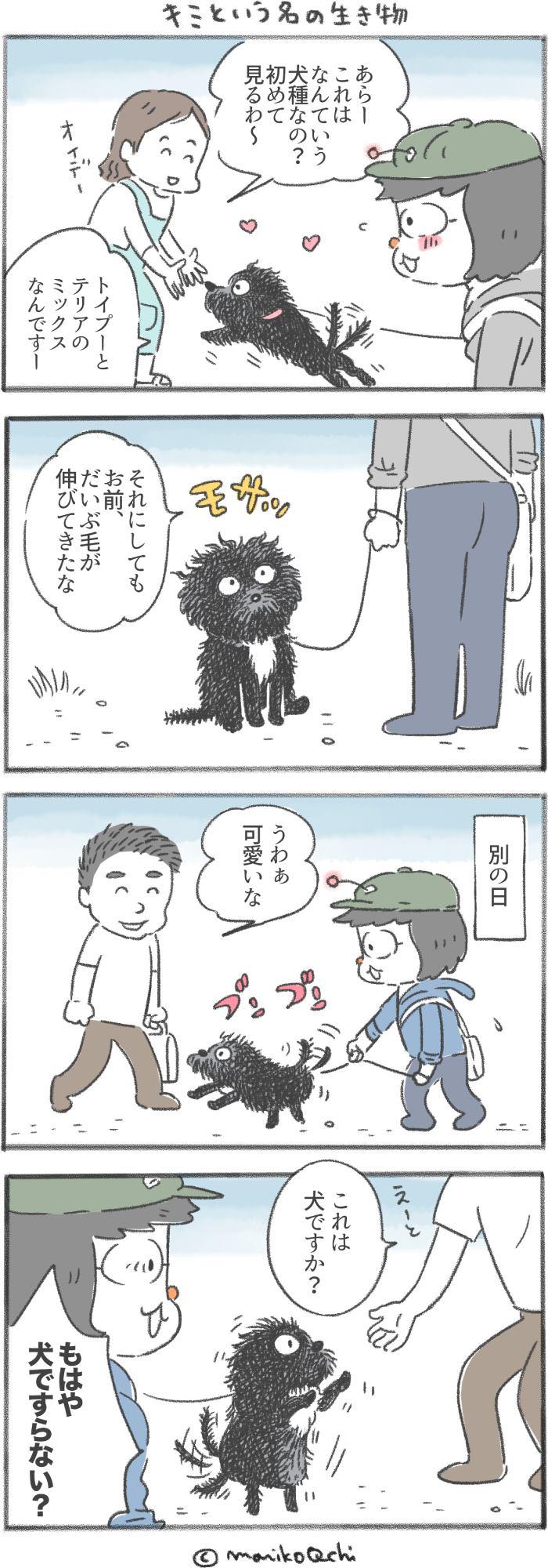 犬と暮らせば 第124話