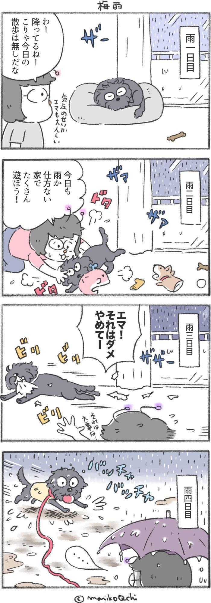 犬と暮らせば【第194話】