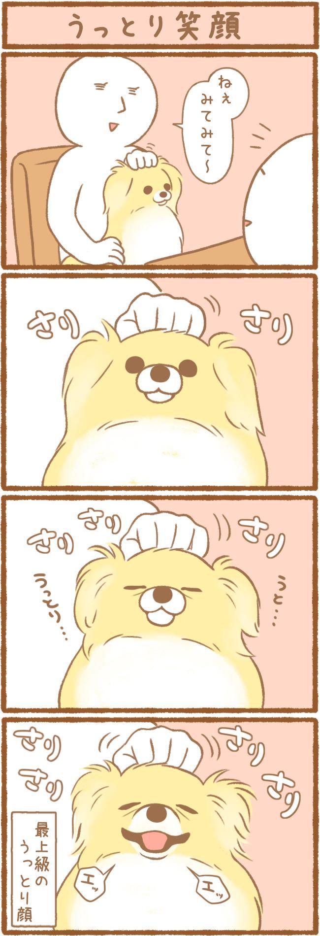 ただの犬好きです。第78話 うっとり笑顔
