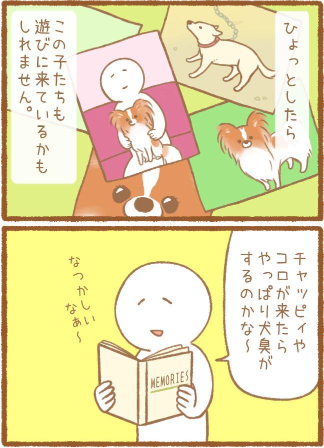 ただの犬好きです。第65話 お盆 2枚目