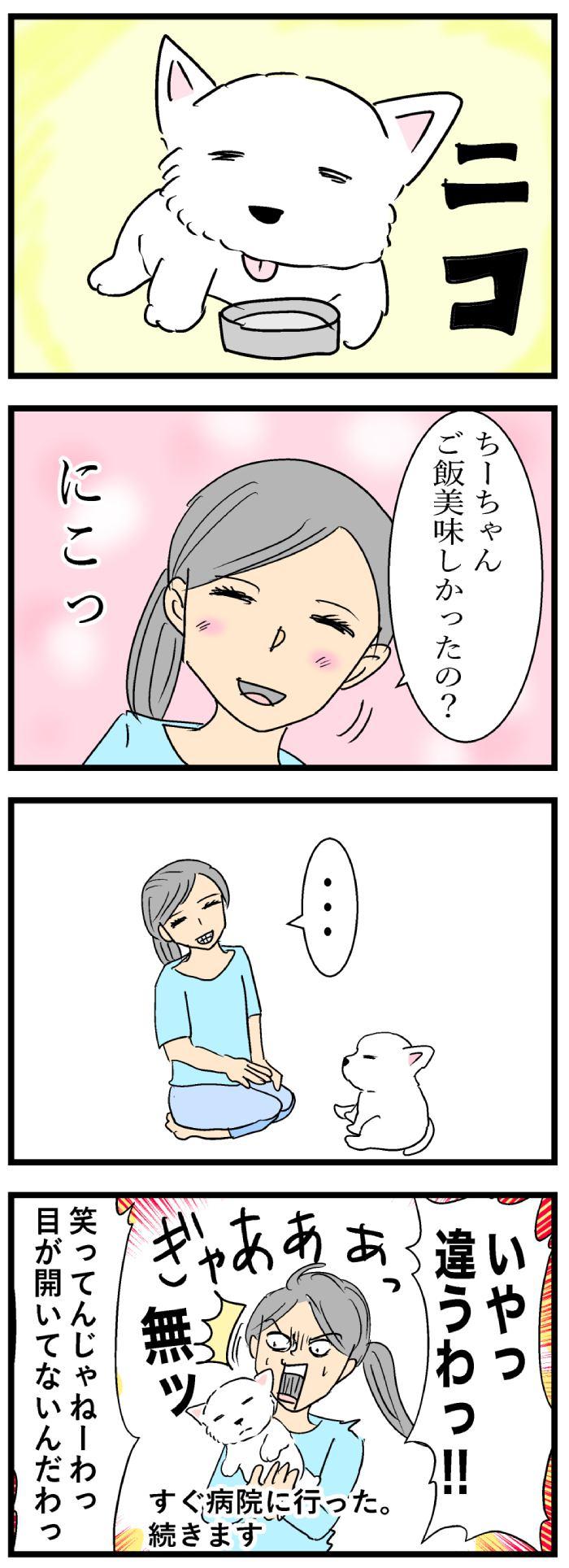 ちーちゃんですけどもっ【第108話】