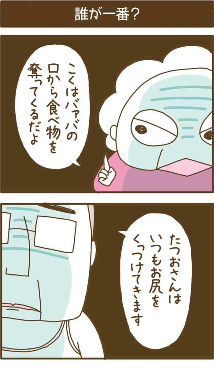 フレブルこくぼ第22話1枚目