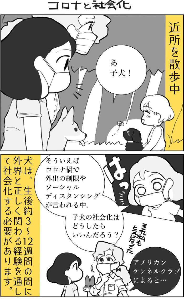 くりかのこ アメリカ犬暮らし第25話1枚目
