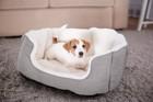 犬のベッドの種類とそれぞれのメリット