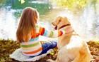 犬を飼う前に読んでほしい「12個の飼い主適正チェック」