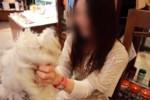 愛犬飼育管理士
