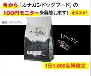 100円モニターキャンペーン