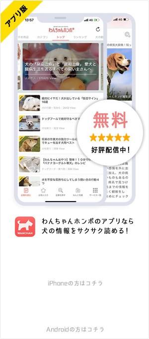 アプリ版無料好評配信中! わんちゃんホンポのアプリなら犬の情報をサクサク読める!