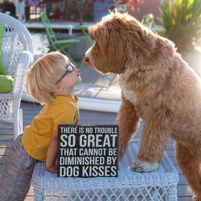 見つめ合う犬と子供