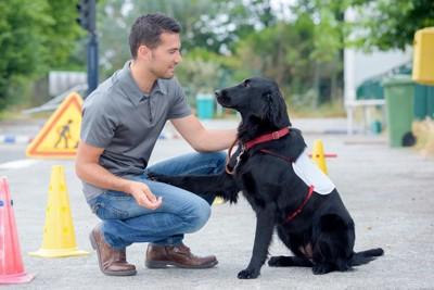 ドッグトレーナーと犬
