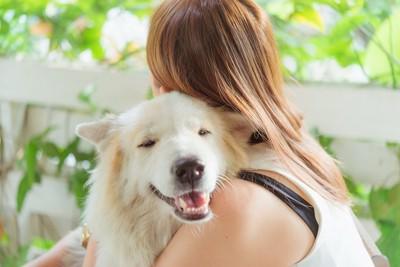 飼い主と抱き合う犬