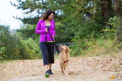 アイコンタクトをしながら散歩する犬と女性