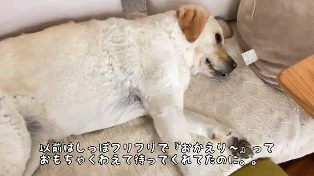 以前は~字幕