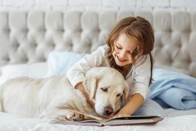 一緒に本を見る女の子とゴールデンレトリバー