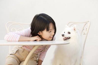 テーブルに座って見つめ合う少女と犬