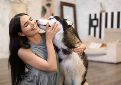 女性を舐めるハスキー犬