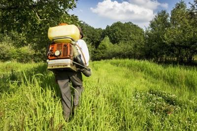 雑草に農薬を撒く人