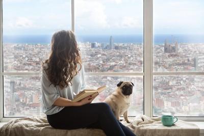 高層マンションの窓から外を見る女性と犬