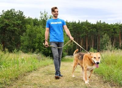 保護犬と散歩する男性