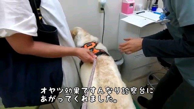 オヤツ効果~字幕