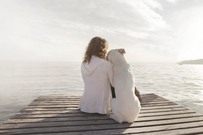女性に体を預ける白い犬の後ろ姿