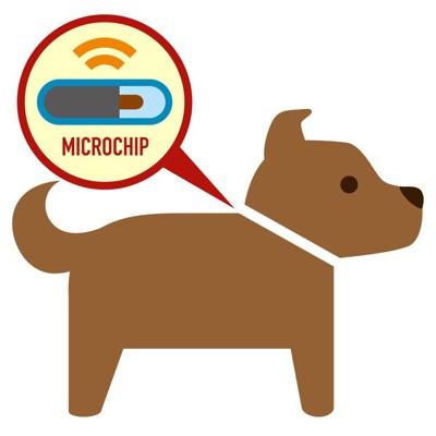 マイクロチップを入れた犬のイラスト